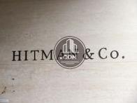 HITMAN & Co.