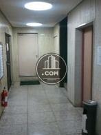 コンパクトでシンプルなエレベーターホールです