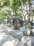 お洒落な街路樹ゾーン