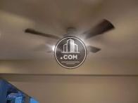 天井部分です
