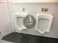 男子トイレ小便器
