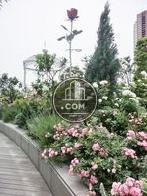 ガーデンスポット