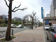 街路樹の配置された歩道