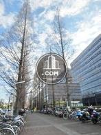 街路樹の立ち並ぶ駐輪エリア