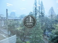 専用部の窓からは千鳥ヶ淵の緑が望めます