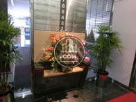 植栽はエレベーターの前にあります